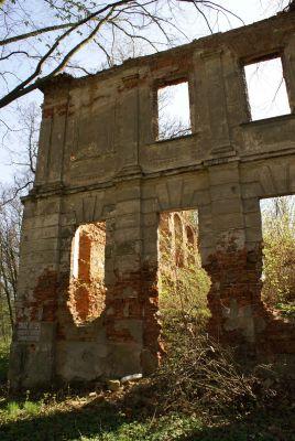 9972viki Ruiny pałacu w Zaborowie. Foto Barbara Maliszewska