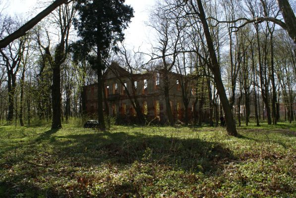 Ruiny pałacu w Zaborowie. Foto Barbara Maliszewska
