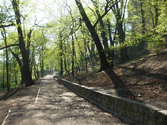 Park Henryka Dabrowskiego 4