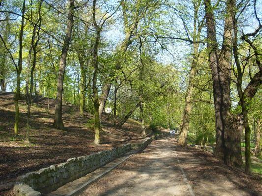 Park Henryka Dabrowskiego 5