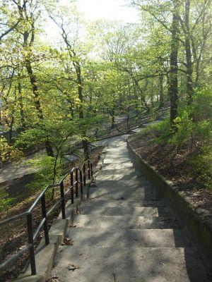 Park Henryka Dabrowskiego schody 1