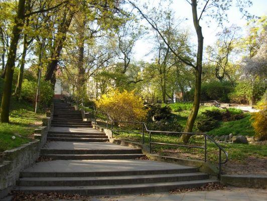 Park Henryka Dabrowskiego schody 2