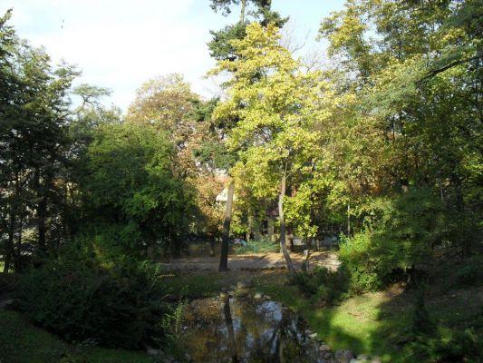 Staw dolny park Dabrowskiego Bydgoszcz