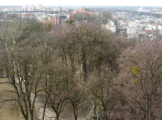 W ciśn Bdg widok 03-2013 park Dąbrowskiego