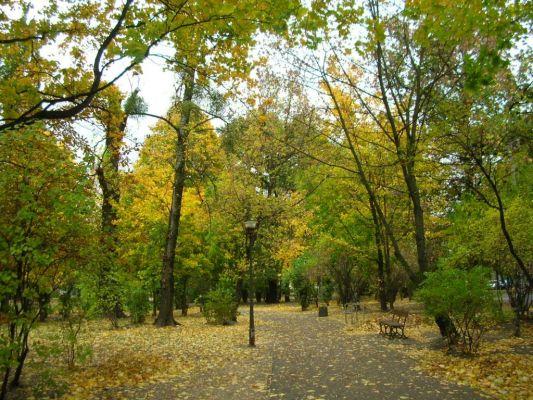 Bydgoszcz Park Kochanowskieego 5
