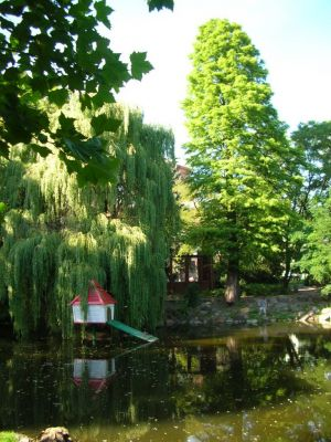 Park Kazimierza Wielkiego a