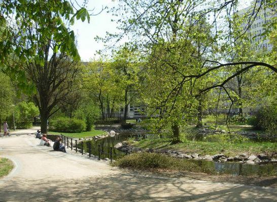 Park Kazimierza Wielkiego staw płd