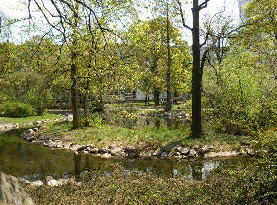 Park Kazimierza Wielkiego staw wyspa