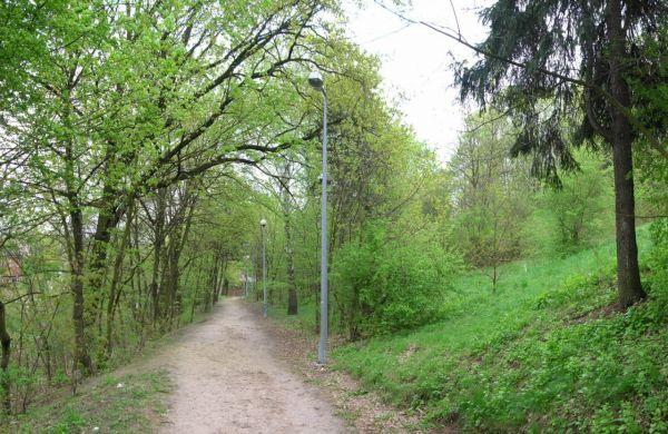 Park na Wzgórzu Wolności dolny taras 2