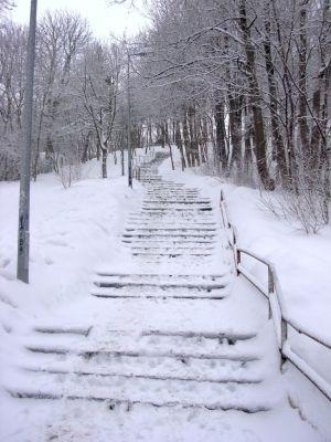 Park na Wzgórzu Wolności schody zima