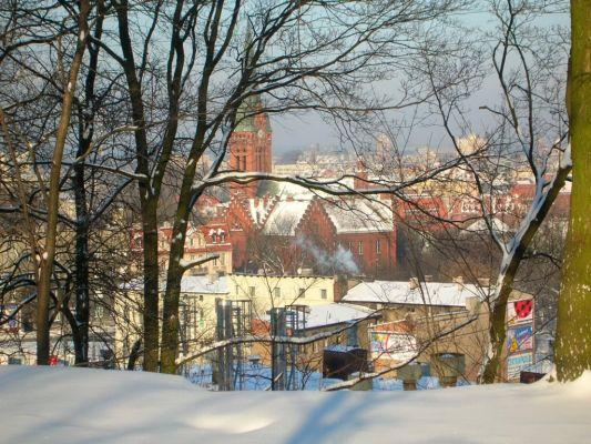 Park na Wzgórzu Wolności widok zima 2