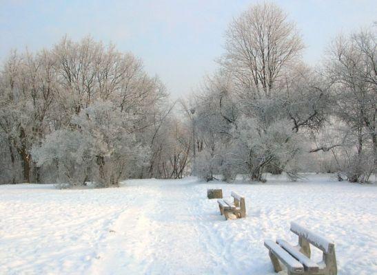 Park na Wzgórzu Wolności zima 2