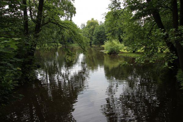 Park Zamkowy w Pszczynie - staw, zachód parku