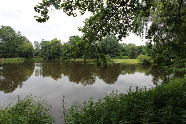 Park Zamkowy w Pszczynie - cześć zachodnia, staw