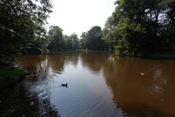 Park Zamkowy w Pszczynie - widok z głównego mostku