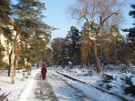 Os Leśne Bydg park a 01-2013