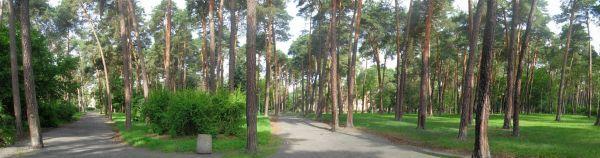 Park Z Załuskiego panorama