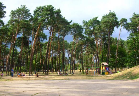 Park Załuskiego 4