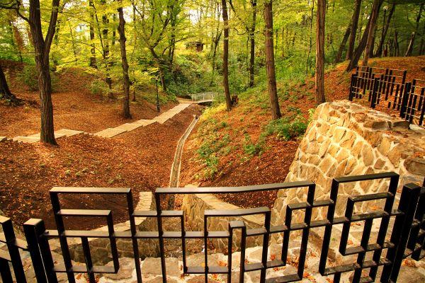 cieżki spacerowe w Parku Zdrojowym