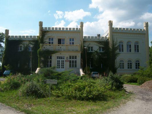 Pałac w Posadzie (1)