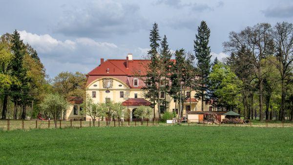SM Radomiłów pałac (1) ID 595745