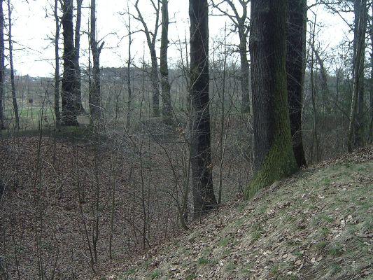 Grodzisko (śląskie) fosa