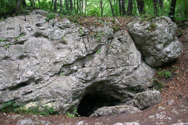 Rezerwat Zielna Góra gmina Olsztyn jaskinia 26.06.2011 2p
