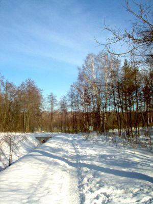 Giszowiec, Potok Bolina - szlak spacerowy