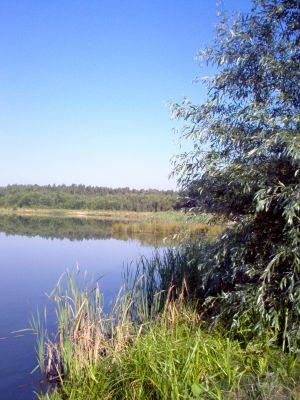 Giszowiec, Staw Barbara