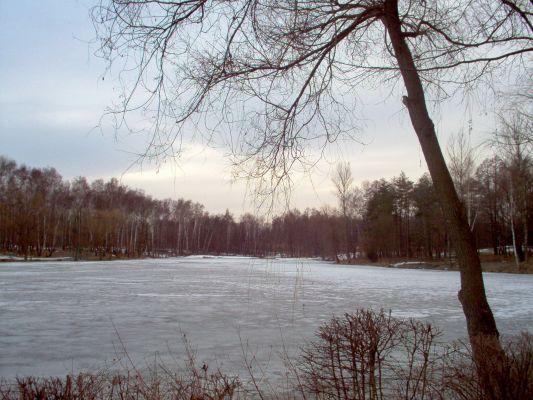 Giszowiec, Staw Janina2