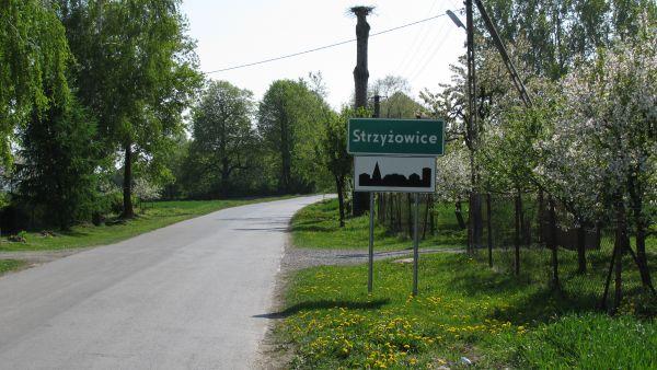 Strzyzowice1