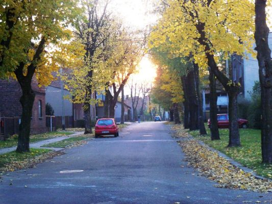 Katowice - Artura Grottgera Street