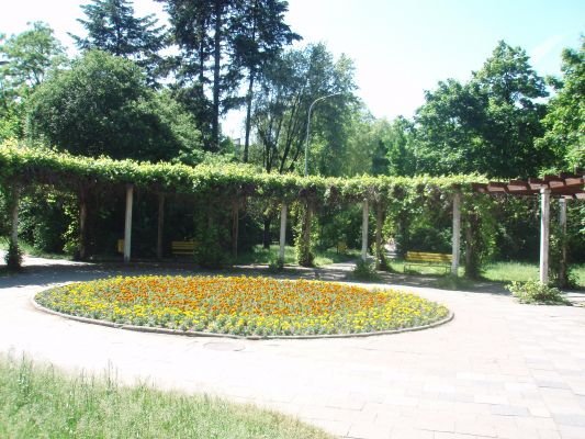 Park przy ul. Leczniczej w Łodzi