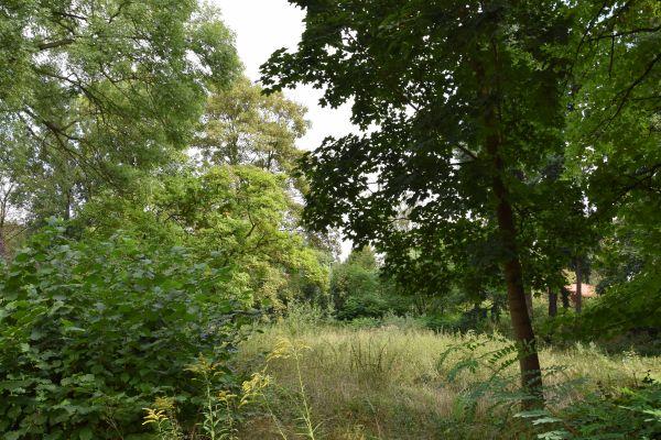 Ogród Willi, Legnica ul. Konopnickiej 2 (I)