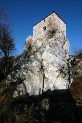 Zamek Bąkowiec w Morsku - ZJ001