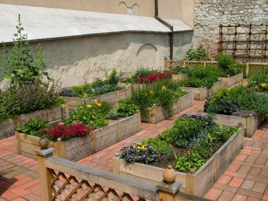 Ogrody Królewskie Wawel 2006-06-20 01
