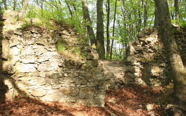 Zamek Ostrężnik