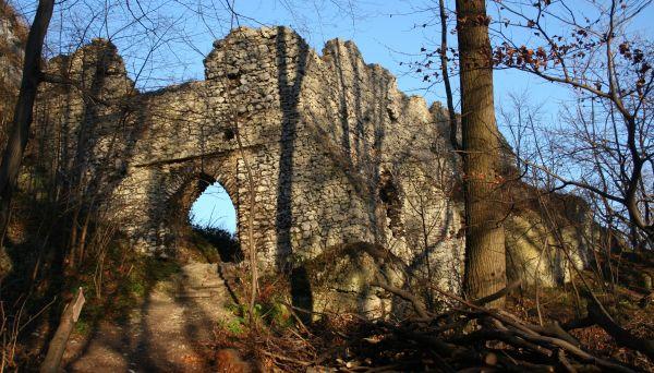 Ruiny zamku w Smoleniu 14.10.11 p3