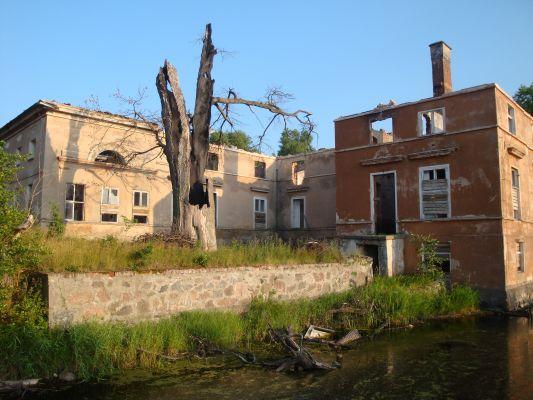 Ruiny pałacu w Karżniczce