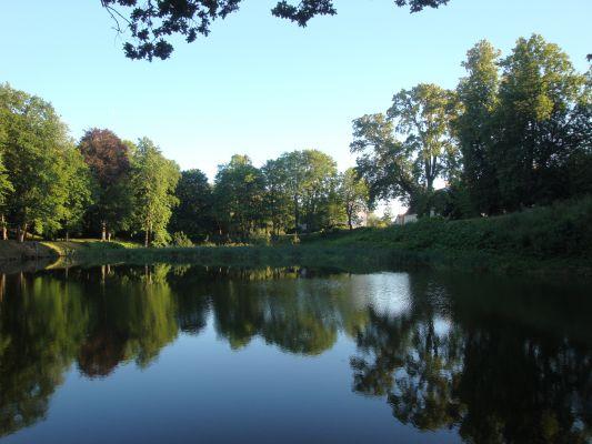 Staw w parku pałacowym w Wolini