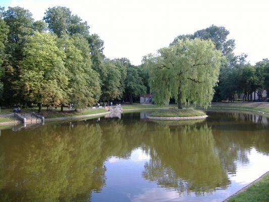 Staw w parku przy pałacu Ogińskich w Siedlcach