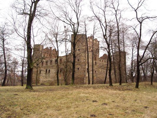 Zamek w Drzewicy,nad rzeką Drzewiczką, widok od południowo zachodniej, od strony do Końskich