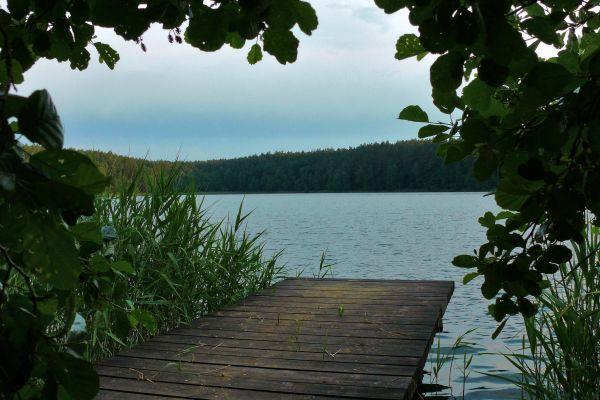 Jezioro Czarne w Drawieńskim Parku Narodowym