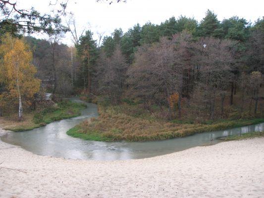 Bukowno-rzeka w środku lasu