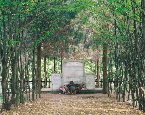 Cmentarz żydowski w Puszczy Niepołomickiej koło Bochni