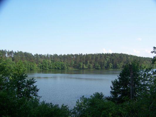 Drawieński Park Narodowy - widok na jezioro Ostrowieckie