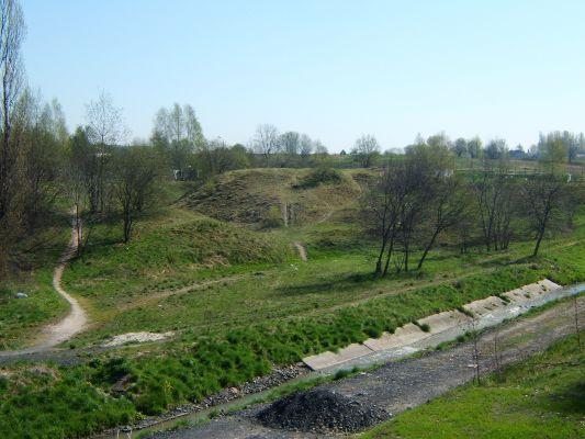 Grodzisko w Kochłowicach