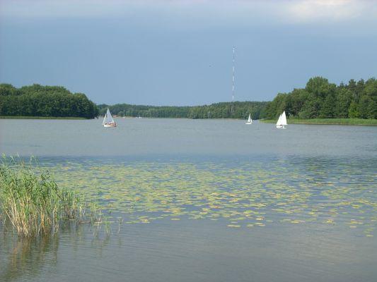 Jezioro Ślesińskie w połowie lipca