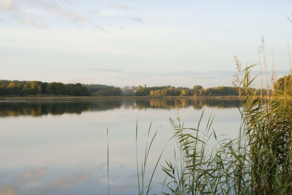 Jezioro Swarzędzkie