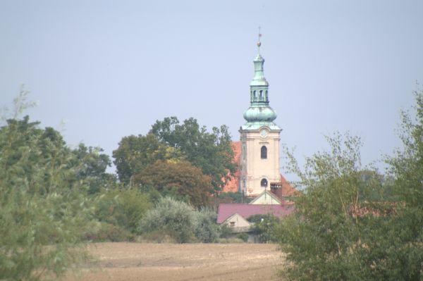Kościół w Sicinach z widziany Łękanowa.